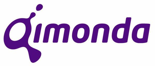 Bellek üreticisi Qimonda sene sonunda kapatılabilir
