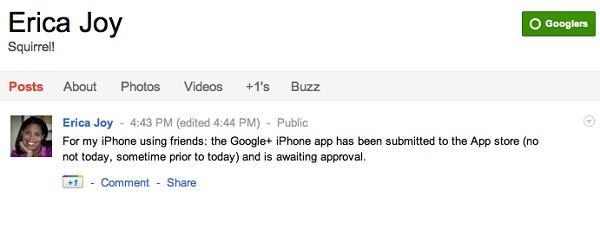iOS cihazlar için Google+ uygulaması çok yakında