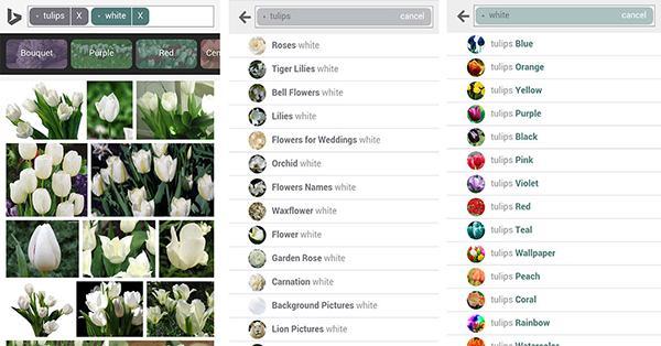 Bing'in görsel arama motoru bu sefer mobil platformlarda yenilendi