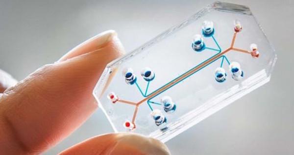 Bu yılın en iyi tasarımı yapay bir insan hücresi seçildi
