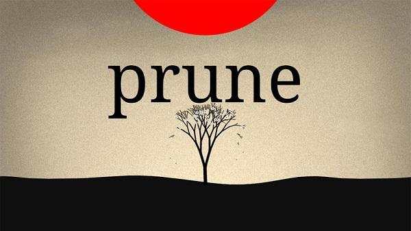 Joel McDonald'ın bulmaca oyunu Prune'u denedik
