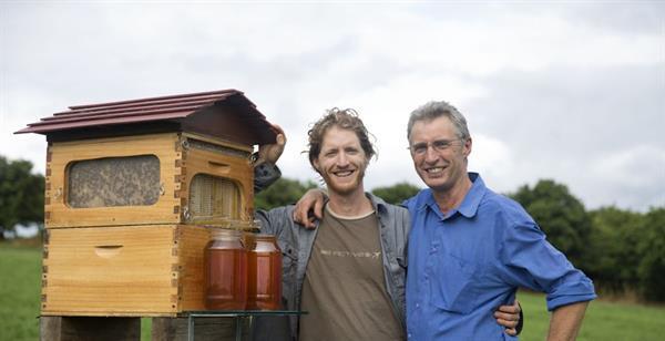 Flow Hive arı kovanını bal pınarına dönüştürüyor