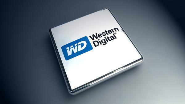 Western Digital yüzde 15 hissesini Çinli Unis'e sattı