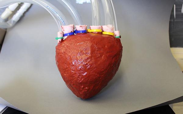 Cornell Üniversitesi araştırmacıları, köpük kullanarak yapay kalp üretti