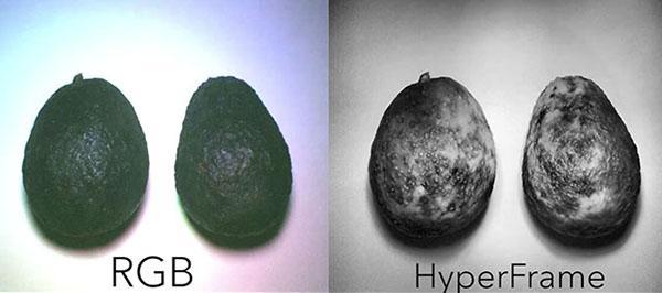 Araştırmacılarından uygun fiyatlı Hiperspektral görüntüleme kamerası: Hypercam