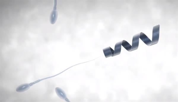 Kısırlığa çare olabilecek nano teknoloji: Spermbots