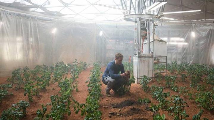NASA patates yetiştirmeye başladı