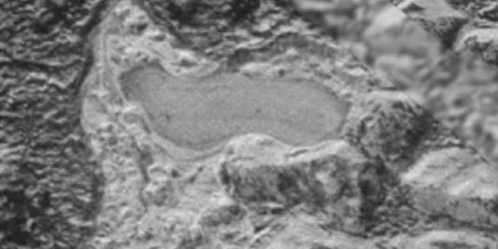 Yeni Ufuklar, Plüton'un yüzeyindeki donmuş gölü görüntüledi