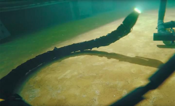 Robotik yılandan ürkütücü yüzme videosu