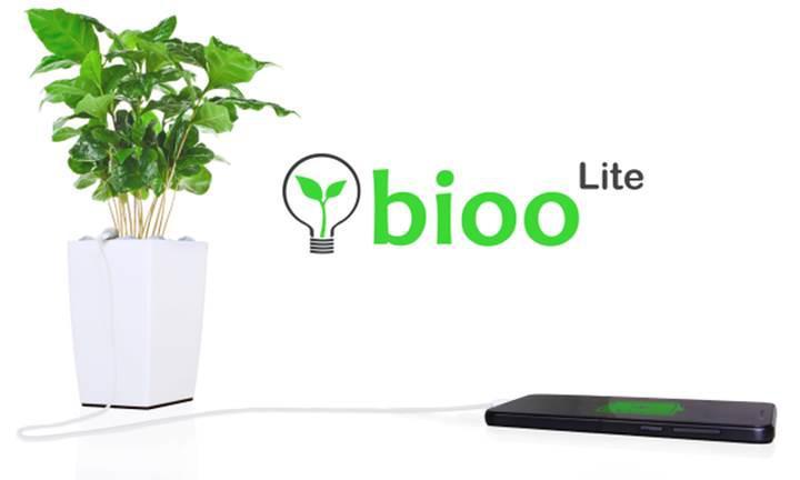 Bitkilerle telefonunuzu şarj edin