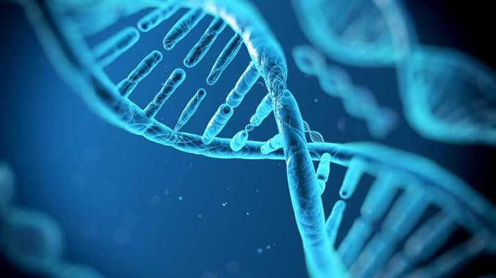Bilim insanları canlı hücreye veri kodlamayı başardılar