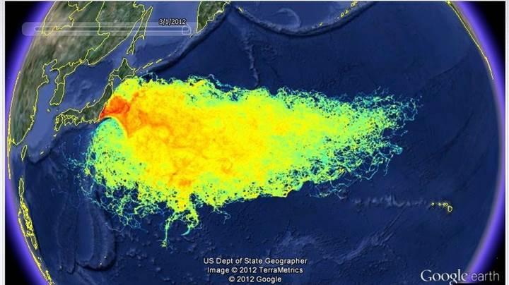 Pasifik Okyanusu'nda radyasyon seviyesi sonunda normale dönüyor