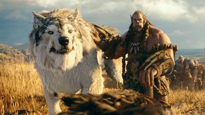 Warcraft için devam filmleri gündemde