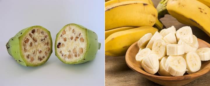 Sebze ve meyveler genetik modifikasyona uğramadan önce nasıl görünüyordu?