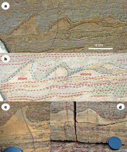 Dünya'nın en eski fosilleri Grönland'da keşfedildi
