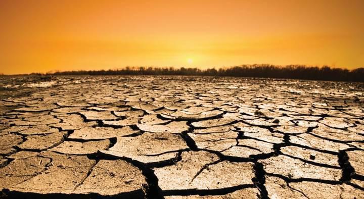 Toprağın ısınması sonucu ortaya çıkan karbon tehlikeli seviyelere ulaşabilir