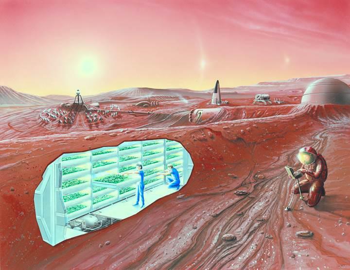 Elon Musk Mars Planını Açıkladı: Mars'ta koloni nasıl kurulacak?