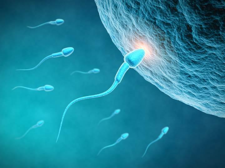 DNA'nın düzenlemesi artık mümkün
