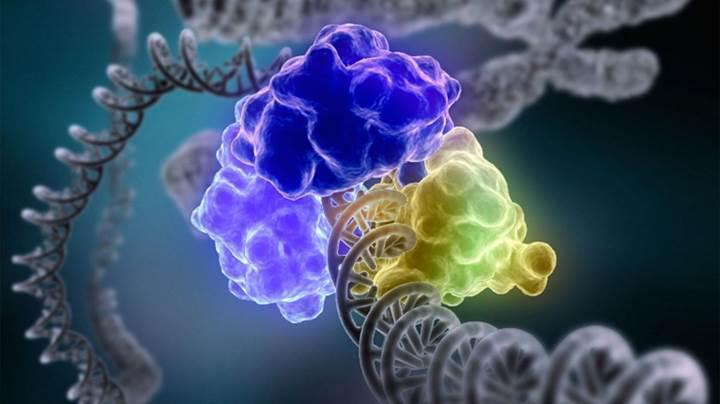 Gen düzenlemede çığır açan CRISPR nedir?