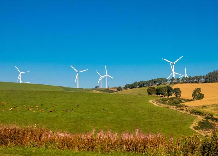 Microsoft 15 yıllık yenilenebilir enerji satın aldı
