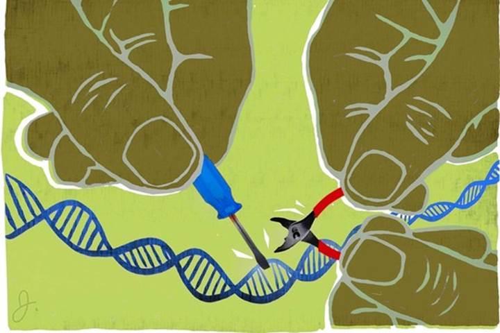 Gen düzenlemede robotlar devreye giriyor