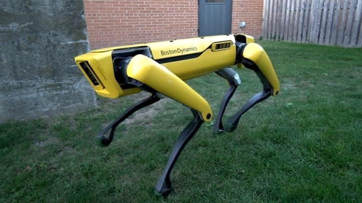 Boston Dynamics'in robot köpeği artık eskisi kadar ürkütücü değil