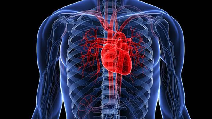 Türk araştırmacılardan yerli imkanlarla kalp pompası