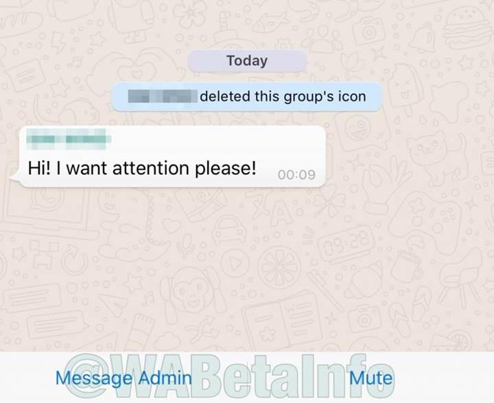 WhatsApp'ın yeni özelliği grup yöneticilerinin yetkisini arttırıyor