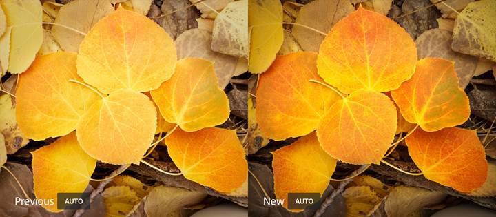 Adobe Lightroom CC artık fotoğrafları yapay zekayla otomatik olarak düzenleyebiliyor