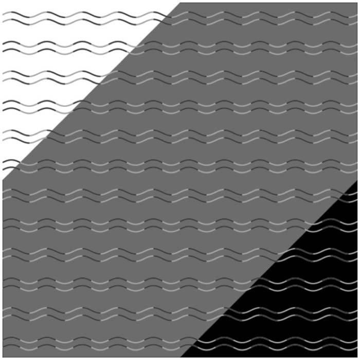 İşte internet dünyasını sarsan optik illüzyon: 'Eğrisel körlük' nedir?