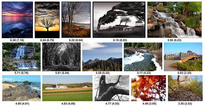 Google'ın yeni yapay zekası fotoğrafların kalitesini değerlendiriyor