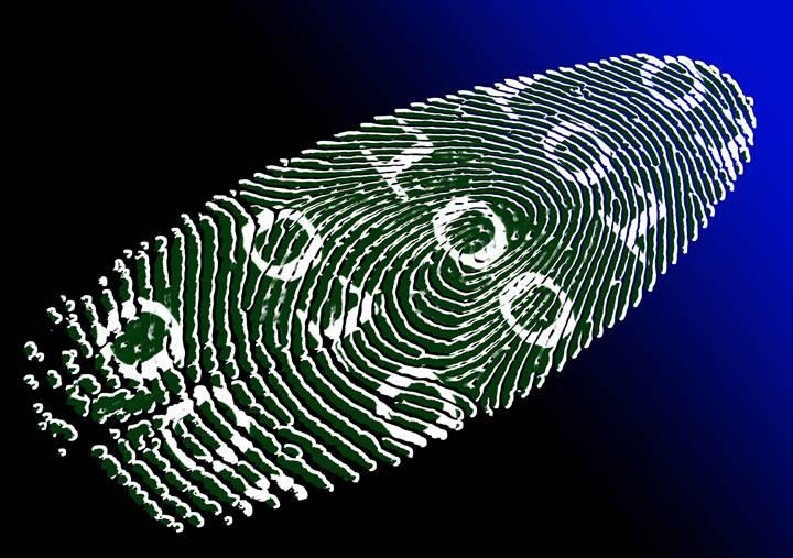 Dijital kimlik ile vize ve pasaporta ihtiyaç duymadan yolculuk yapılabilir