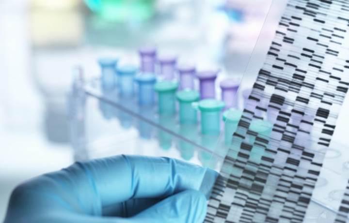 Estonya, vatandaşlarına ücretsiz genetik test hizmeti sunacak