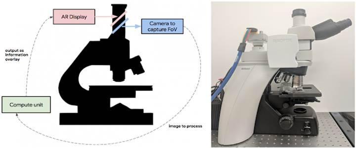 Google'dan kanser tespiti için AR özellikli akıllı mikroskop!