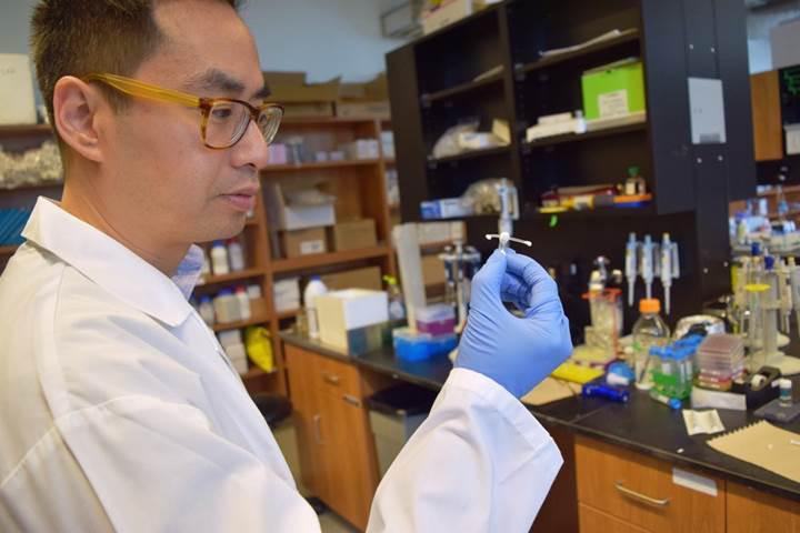Yeni vajinal implant sayesinde HIV'in bulaşması engellenebilir