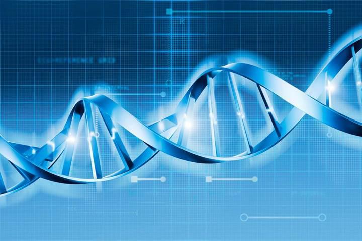 CRISPR tekniği kanser riskini artırabilir