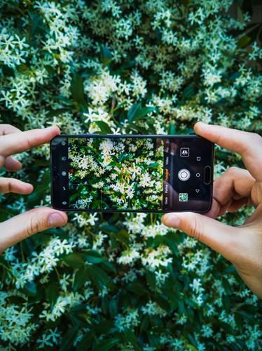 Teknolojiyi fotoğrafa