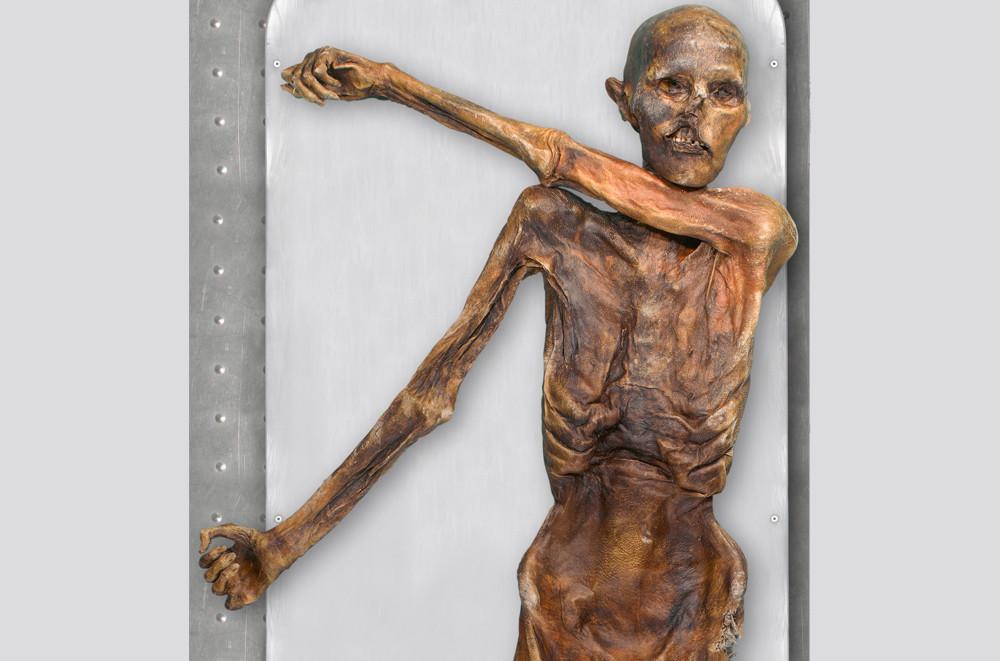 Buzul içerisinde mumyalanmış Buzadam Ötzi'nin son yemeği teşhis edildi