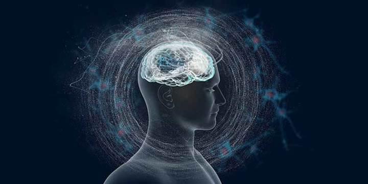 Beynimizdeki dev nöronlar algılarımızı nasıl etkiliyor?