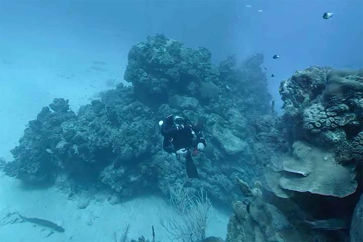 Hydrus VR kamera ile derin sularda 8K video kaydetmek mümkün