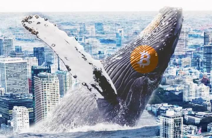 Kripto para piyasası 200 milyar dolara indi, Bitcoin hakimiyeti yüzde 51 oldu