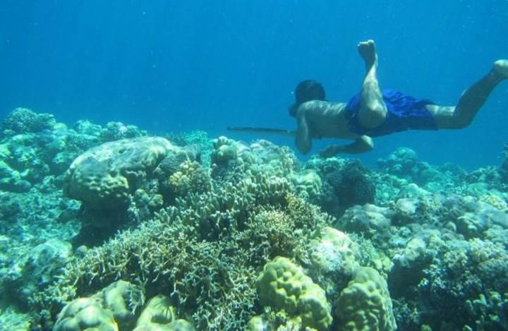 İnsan evriminin günümüzdeki etkileyici örneklerinden biri: Endonezya'daki Bajau halkı