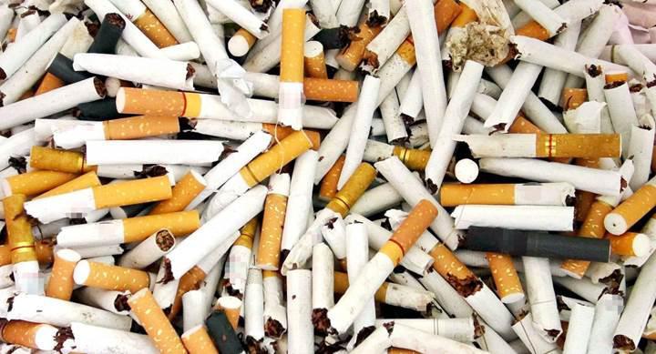 Dünya Sağlık Örgütü, sigara fiyatının artırılmasını istiyor