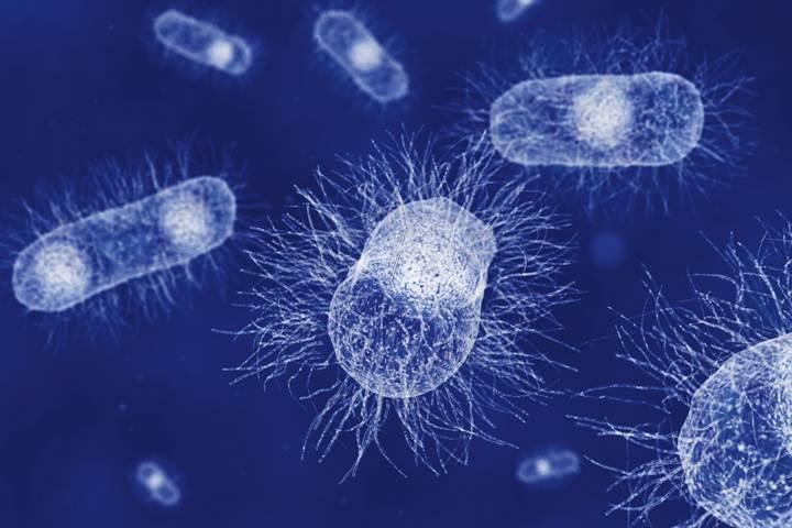 Antibiyotik direncini dakikalar içinde tespit eden test