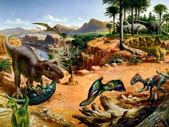 150 milyon yıllık, bilinen en eski pirana benzeri balık fosili keşfedildi