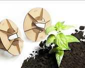 Acorn, çöllerde bitki yetiştirebilmek için tasarlanmış ve biyolojik atıklardan üretilmiş dekoratif bir saksı.