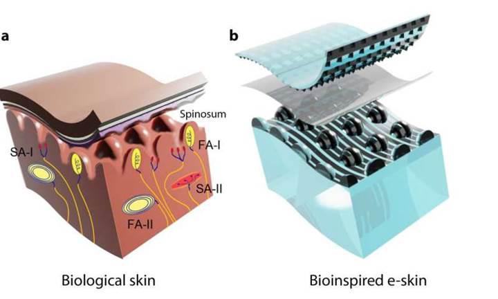 Robotlara dokunma hissi veren elektronik eldiven geliştirildi