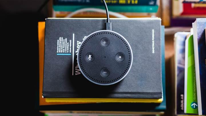 Google Asistan 2018 yılının en zeki sesli asistanı