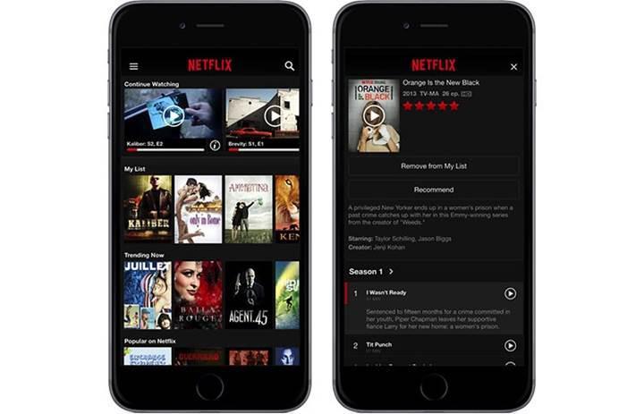 Netflix abonelik sistemini iOS'dan kaldırıldı