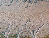 Cadiz körfezi'nde görülen tuhaf kum oluşumları.  Denizin hareketleri ve akarsu çökelinin yüzyıllarca birikmesi sonucu oluışmuş. Güney İspanya.